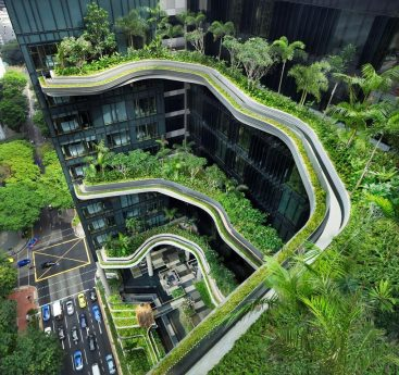 Hotels & Guests Going Green